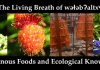 Living Breath of welebaltx Indigenous Foods Symposium banner